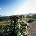 Agriturismo Poggio del Bolognino - Casa vacanze Amelia