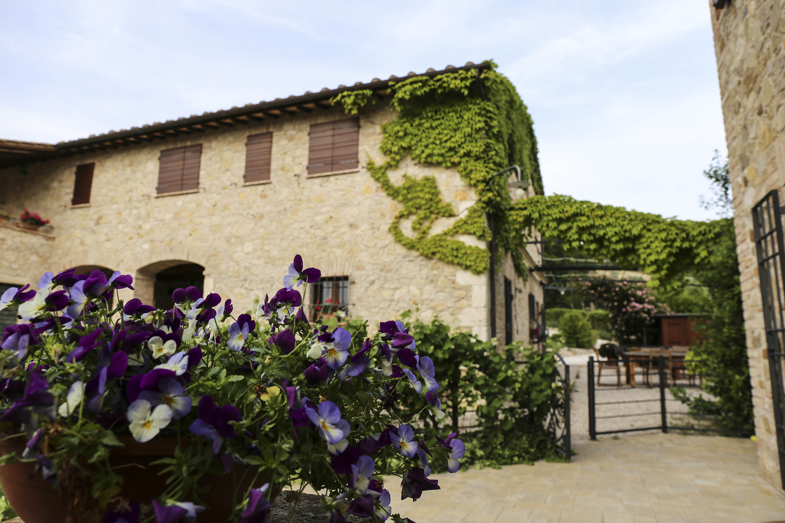 Special offers - Farmhouse Poggio del Bolognino